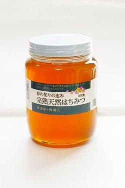 画像2: 完熟天然ハチミツ 百花蜜 1000g入り